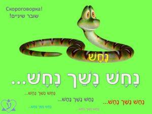Как учить иврит? Учим новые слова на иврите с помощью скороговорок.