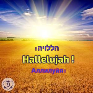 Узнаем происхождение слова Аллилуйя. Учим слова на иврите