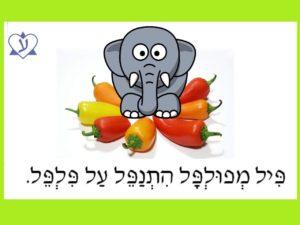 Учим скороговорку на иврите: פיל מפולפל התנפל על פלפל