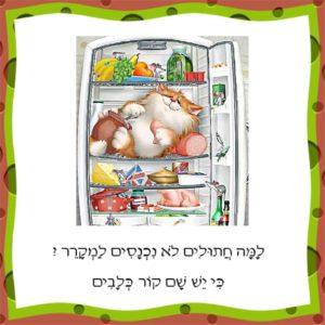Учим иврит с юмором - почему кошки не залезают в холодильник