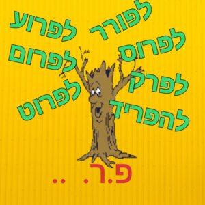Корни слов в иврите. Смысловые группы