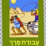 Учим выражения на иврите к празднику Песах