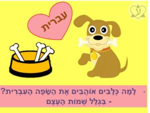 Почему собаки любят иврит?